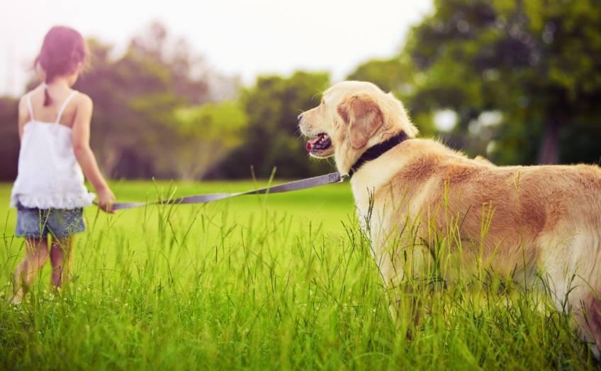 Bambini: avere un cane riduce il rischio di asma