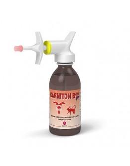 CARNITON B 12 GEL 125ML