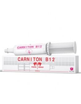 CARNITON B 12 PASTA 1 SIRINGA