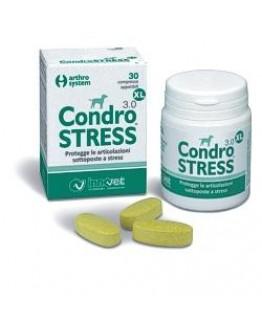 CONDROSTRESS XL 30CPR