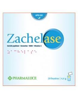ZACHELASE 20BUST 4,6G