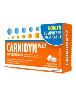 CARNIDYN PLUS 18CRP MASTICABIL