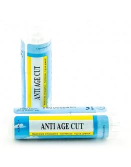 ANTIAGE CUT GR 4G
